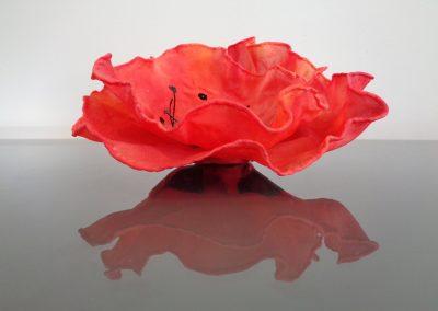 Silk Poppy 1